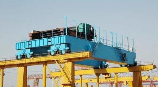 Weihua Overhead Crane Especial